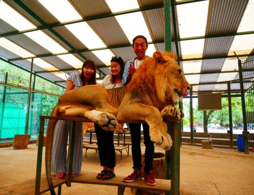 世界一危険な動物園「ルハン動物園」