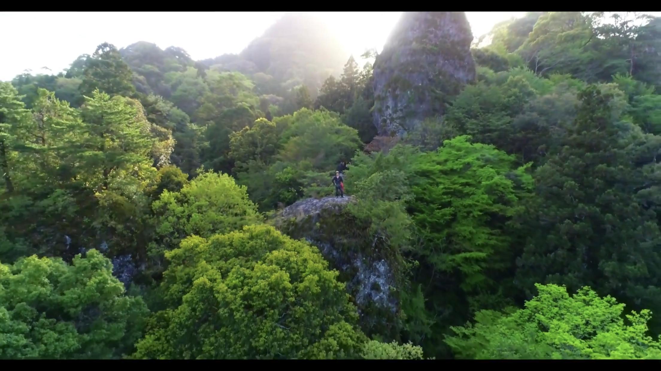 森友嵐士がいく岩屋神社