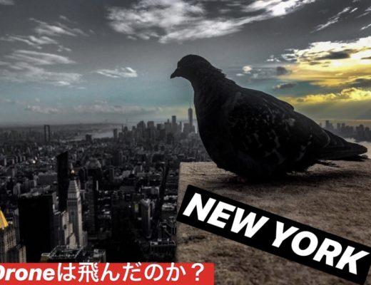 チパコプターinニューヨーク編