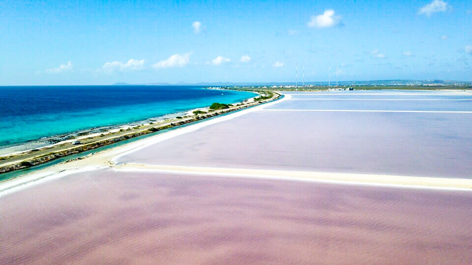 ボネールのピンクビーチをドローンで空撮
