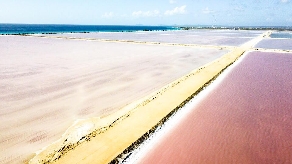 ボネールのピンクビーチをドローンで空撮2