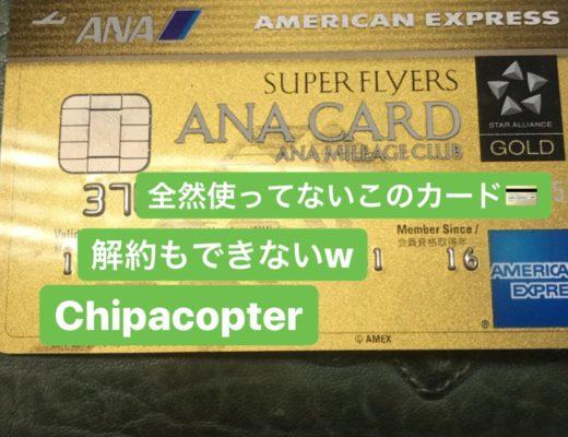 スーパーフライヤーズ用クレカ